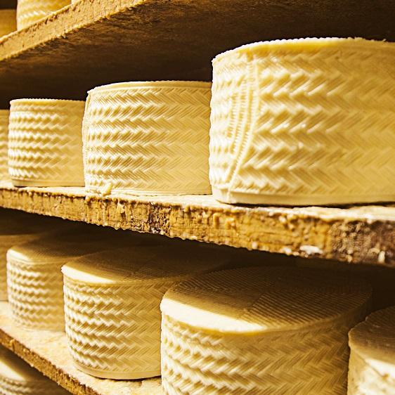 tradición en la elaboración del queso de Herencia