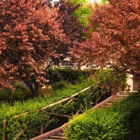 Parque 3 de Abril - Herencia turismo