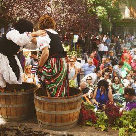 fiesta de la vendimia - Ferias y Fiestas de Herencia - Ciudad Real