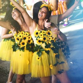 girasoles - Carnaval de verano Herencia